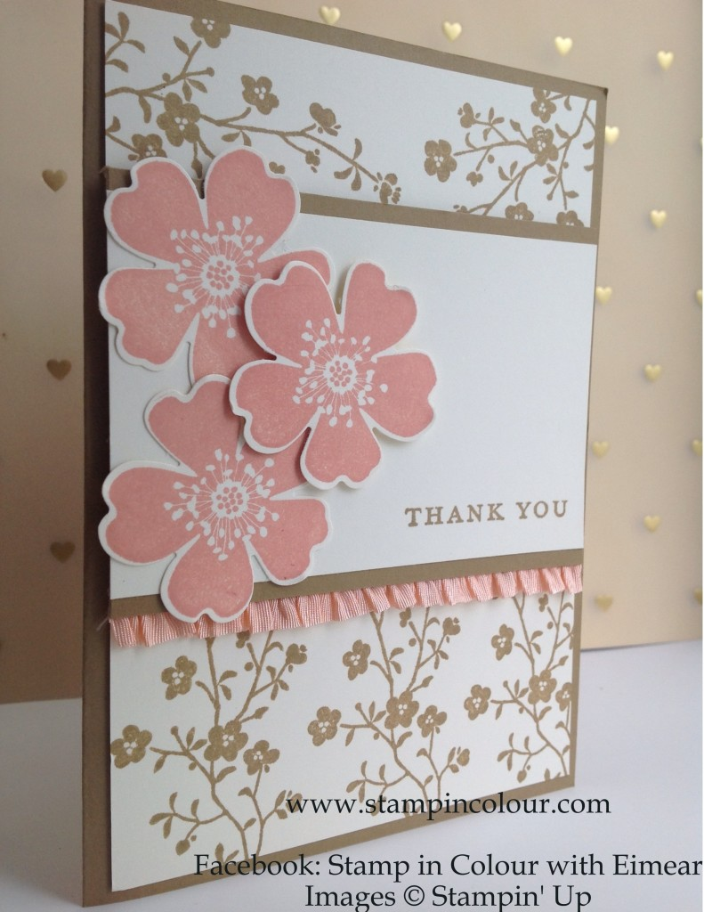 Stampin' Up Morning Meadow with Stretch Ruffle Trim, Baked Brown Sugar and Crisp Cantaloupe 2-001