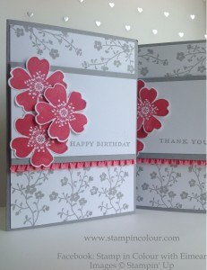 Stampin' Up Morning Meadow with Stretch Ruffle Trim, Smoky Slate ands Strawberry Slush2-001