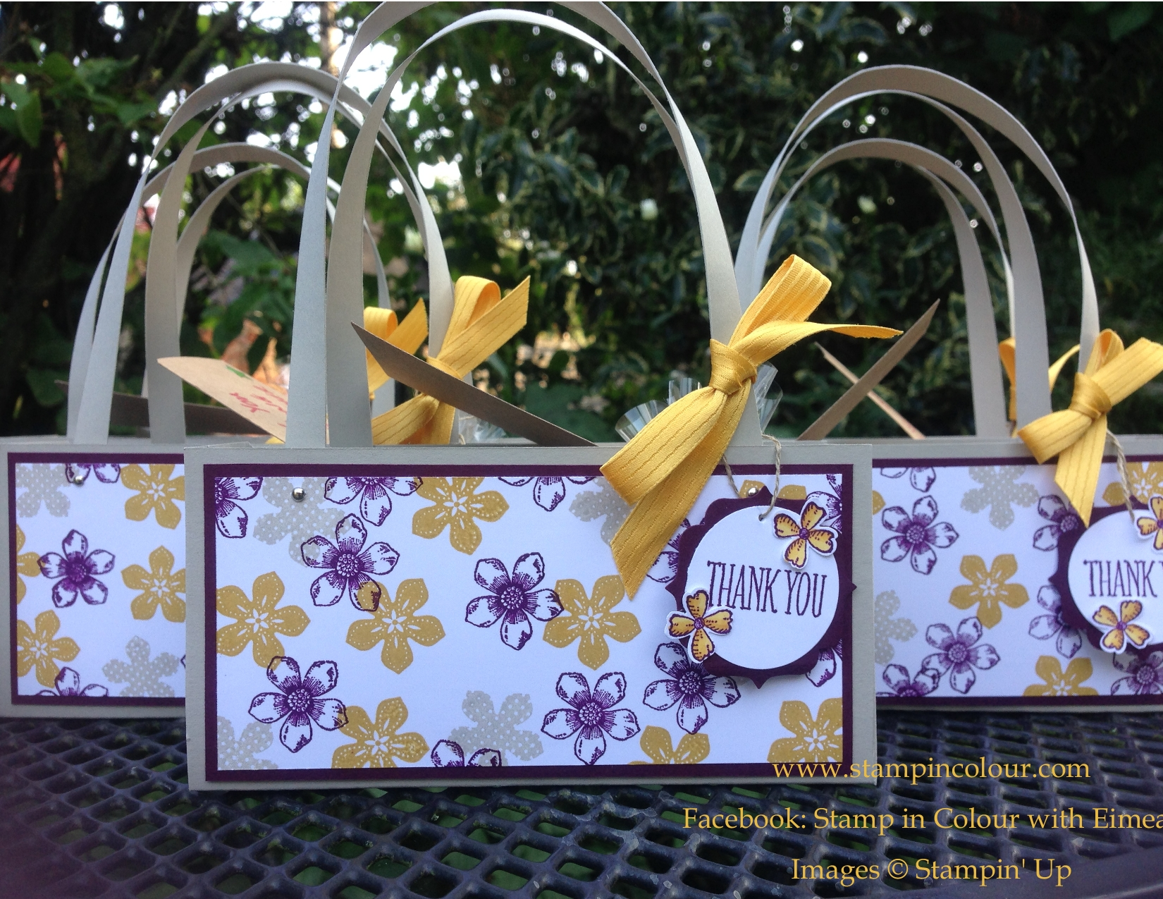 Stampin Up Thank you Cards and Gift Bags |