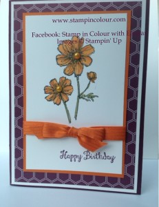 Stampin' Up Bloom with Hope Blendabilities-001