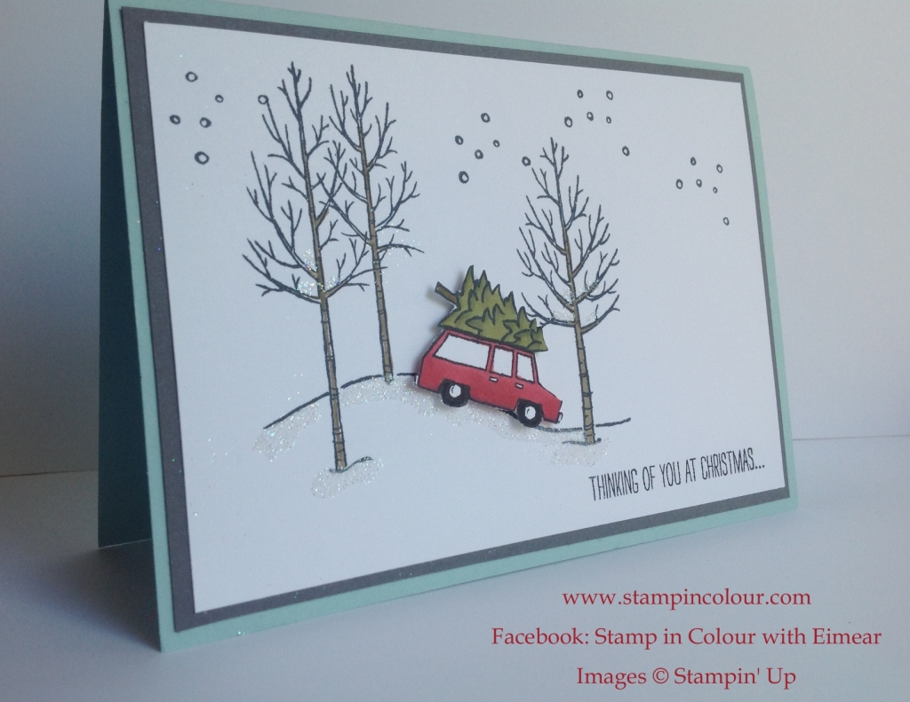 Stampin' Up White Christmas car-001