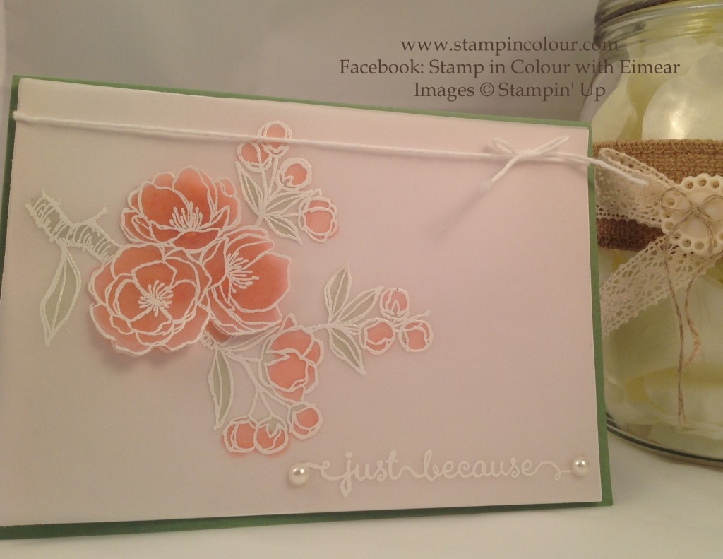 Stampin Up Indescribable Gift on Vellum-001