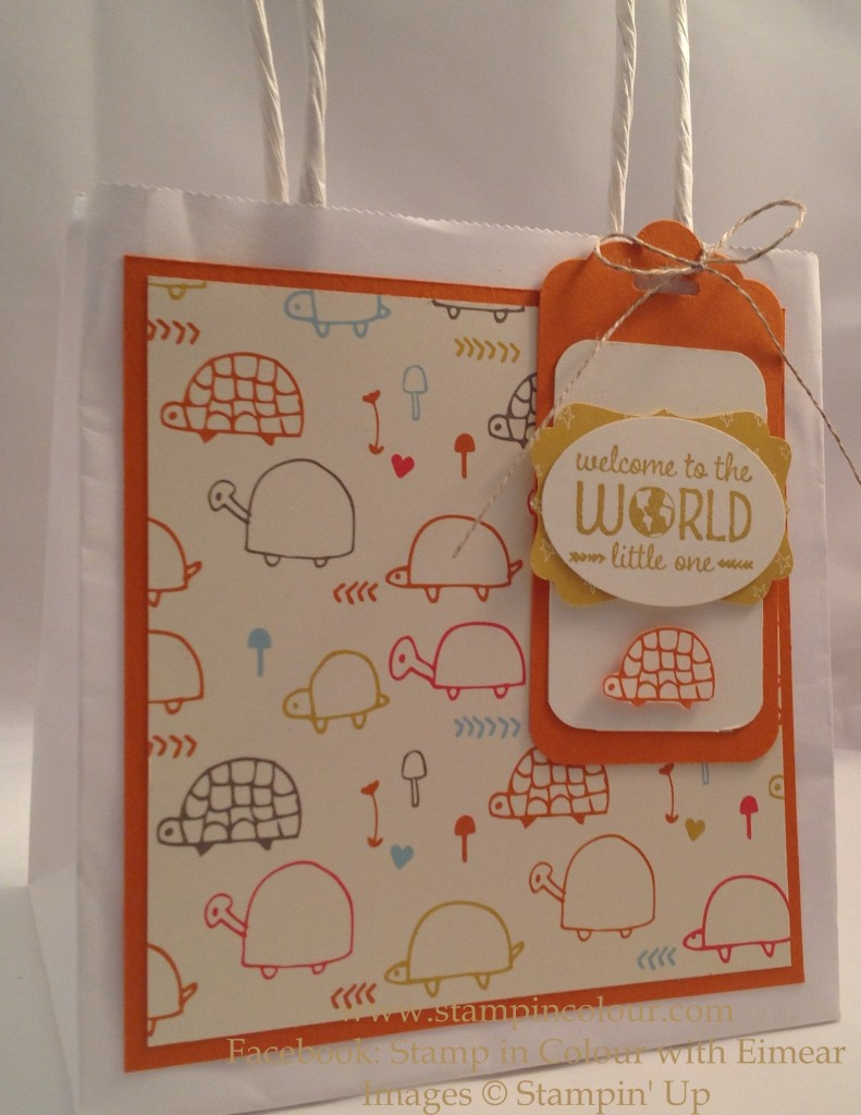 Stampin Up Sweet lil' ones gift bag-001