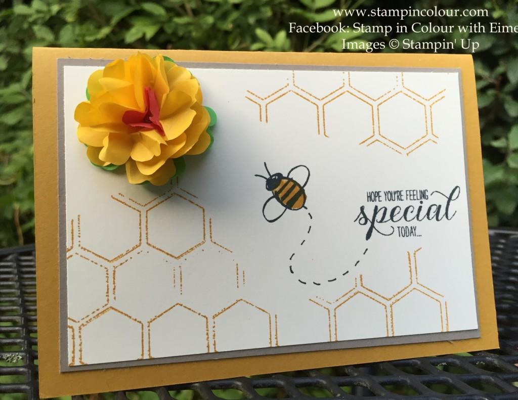 StampinUp Honeycomb Embossing Garden in Bloom-001