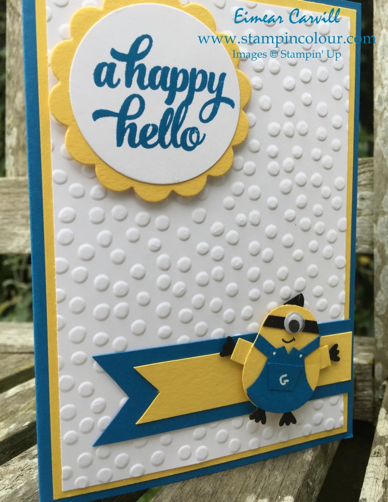 Stampin Up Minion Owl Punch with Tin of Cards-001