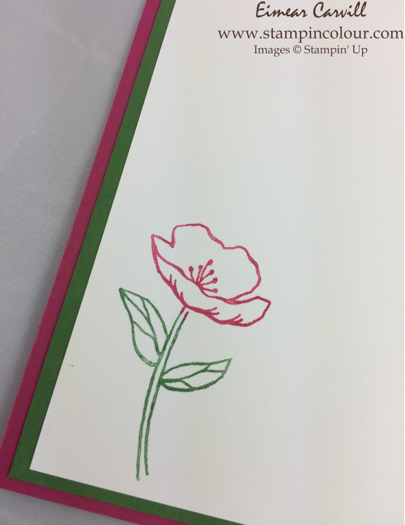 Stampin Up Birthday Blooms #GDP017 2-001