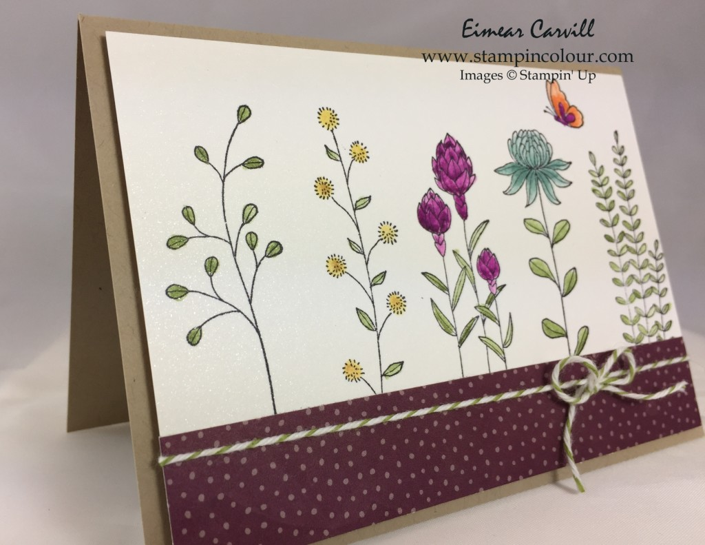 Stampin Up Flowering Fields for Periscope-001