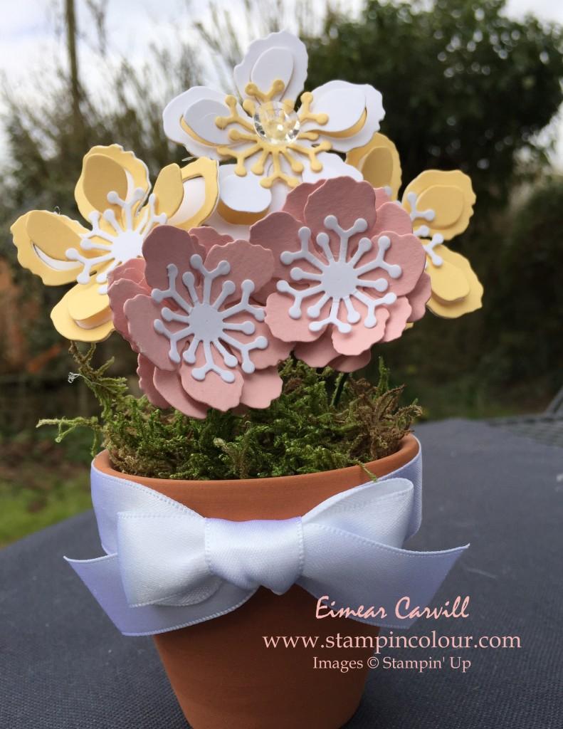 Stampin Up Botanicals Spring Flower Pot-001