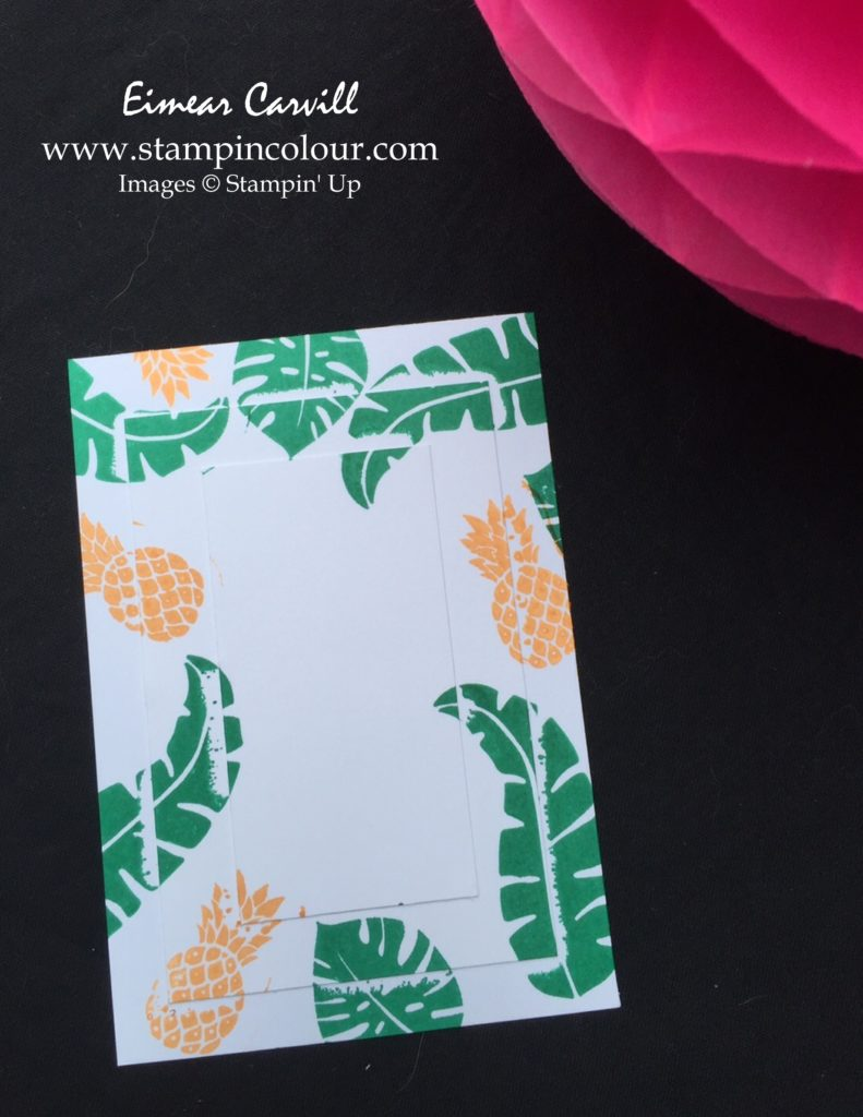 Stampin' Up Triple Time Stamping Tutorial 2-001