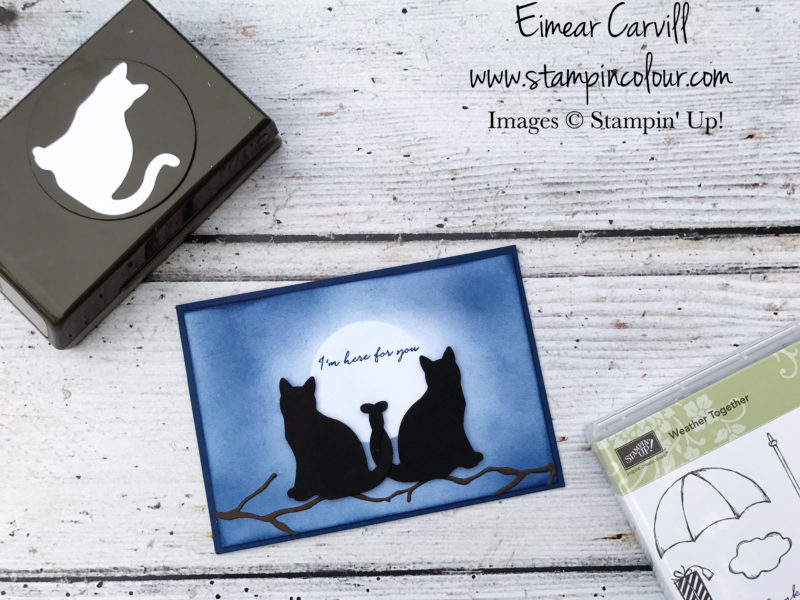 Here for you Cat Punch Eimear Carvill stampincolour