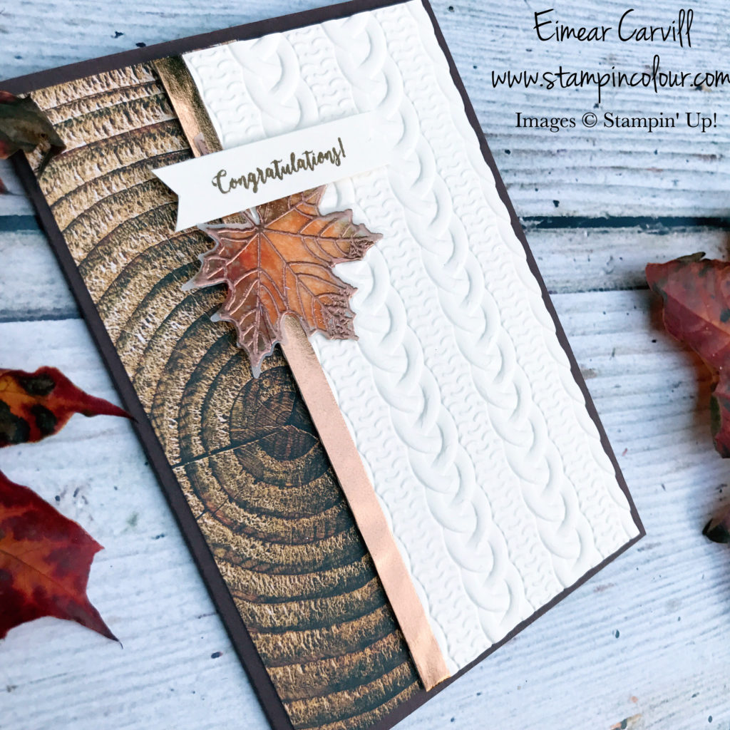 Colourful Seasons Cable Knit Autumnal card