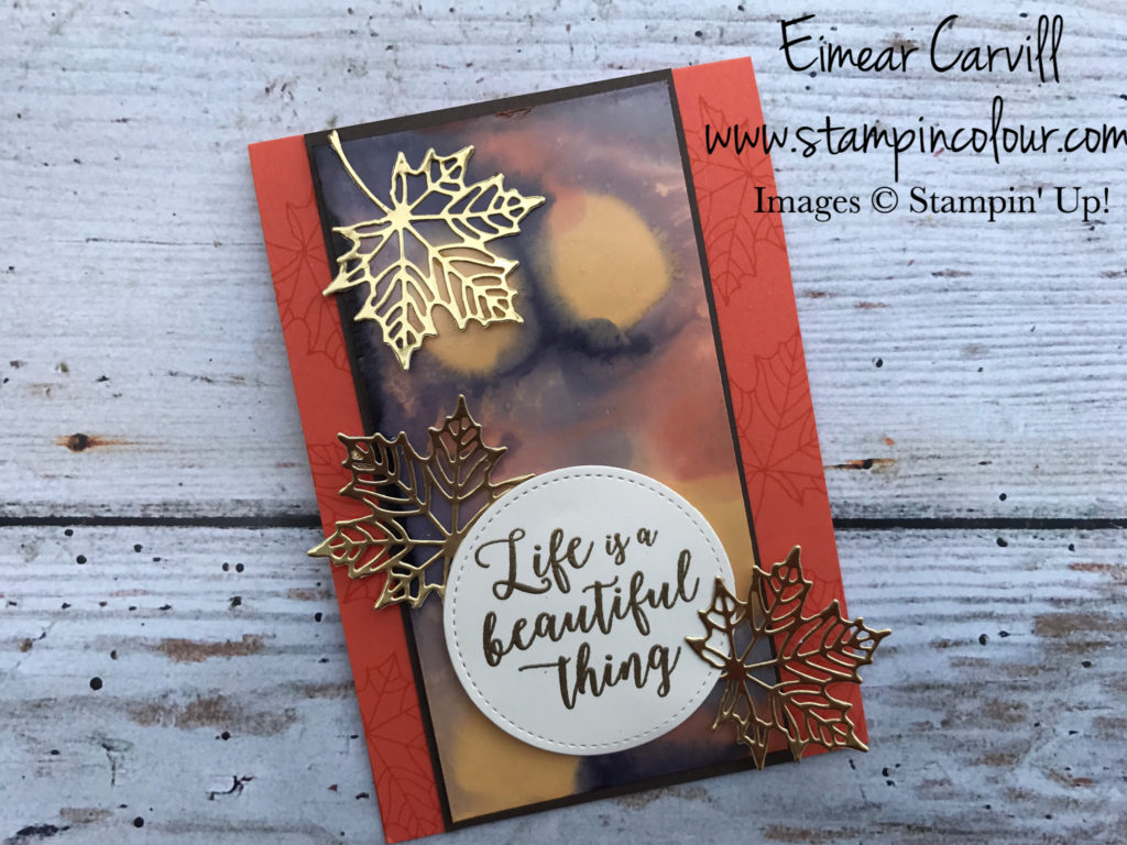 Colorful Seasons Stampin Creatie Blog Hop, Feeling Thankful, Seasonal Layers, Stitched Framelits,